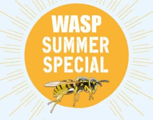 Wasp, Hornet, Yellow Jacket Removal